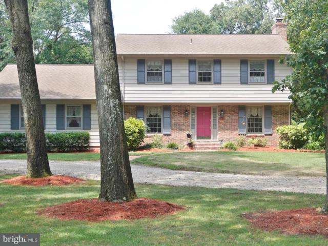 9821 N Shore Drive, SEAFORD, DE 19973 (#1001987872) :: The Rhonda Frick Team