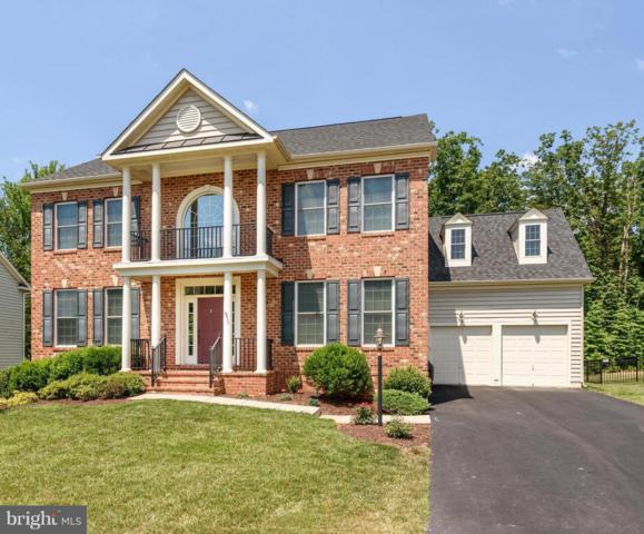 40593 Banshee Drive, LEESBURG, VA 20175 (#1001988432) :: Colgan Real Estate