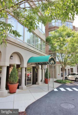 19370 Magnolia Grove Square #108, LEESBURG, VA 20176 (#1002000926) :: Gail Nyman Group