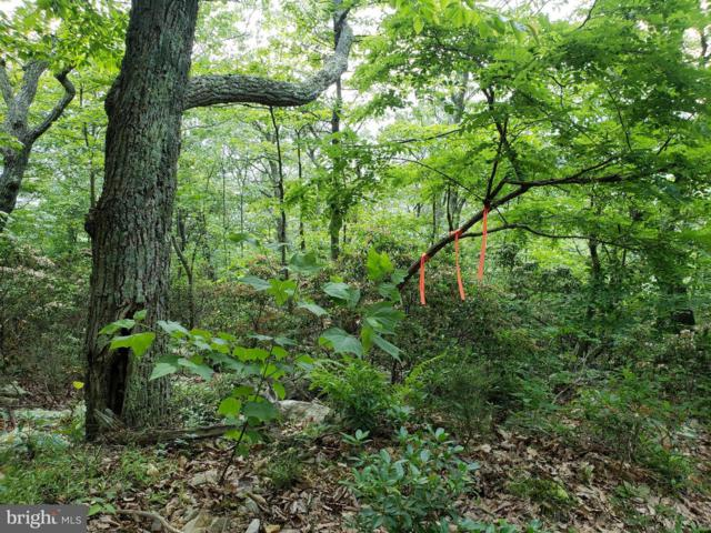 Lot 30 Panther Road, MAYSVILLE, WV 26833 (#1002000972) :: ExecuHome Realty