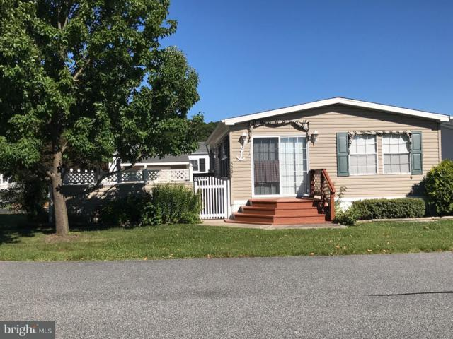 8221 Skipjack Drive, BERLIN, MD 21811 (#1002003274) :: The Windrow Group