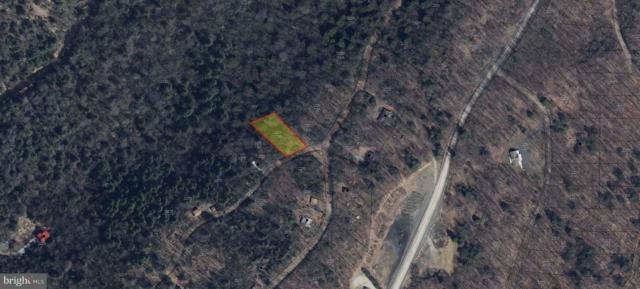 Lot 18A Rhododendron Dr, OAKLAND, MD 21550 (#1002006600) :: Remax Preferred | Scott Kompa Group