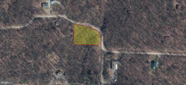 Lot 1 Racoon Drive, OAKLAND, MD 21550 (#1002009688) :: Seleme Homes