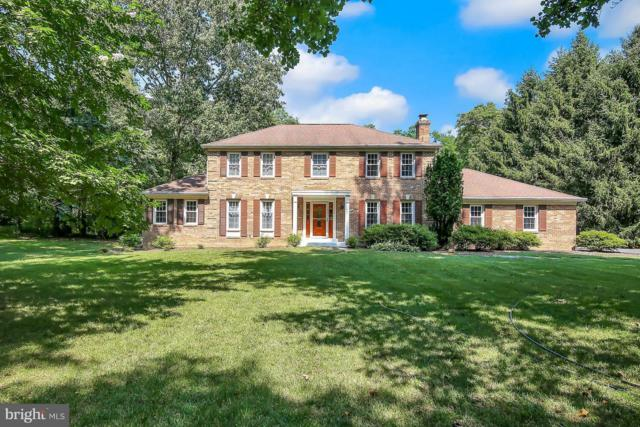 10726 Cleos Court, COLUMBIA, MD 21044 (#1002013244) :: Colgan Real Estate