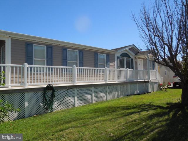 38771 Tyler Avenue, SELBYVILLE, DE 19975 (#1002013544) :: Atlantic Shores Realty