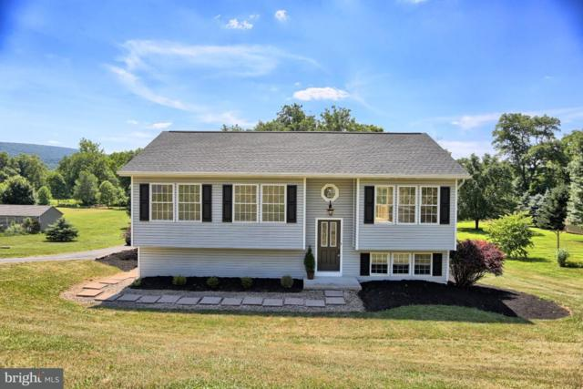 282 Montour Road, LANDISBURG, PA 17040 (#1002013902) :: The Heather Neidlinger Team With Berkshire Hathaway HomeServices Homesale Realty