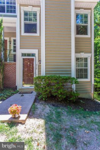315 Overlook Drive #5, OCCOQUAN, VA 22125 (#1002016882) :: Keller Williams Pat Hiban Real Estate Group