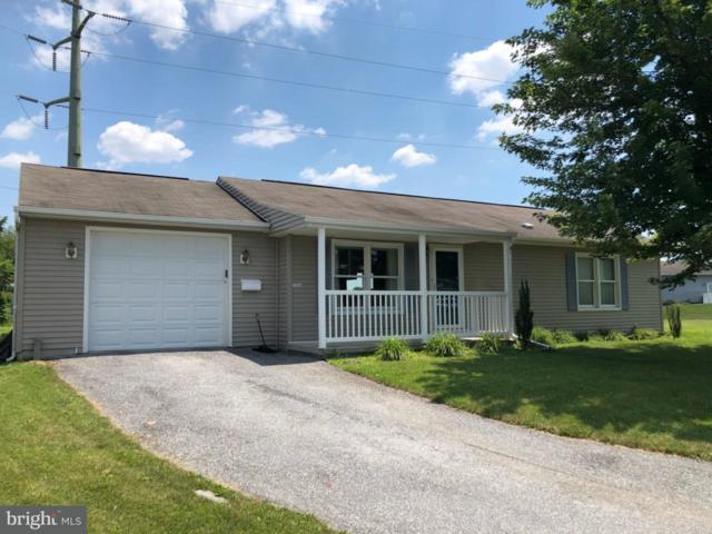 114 Austin Drive, ENOLA, PA 17025 (#1002022444) :: Teampete Realty Services, Inc