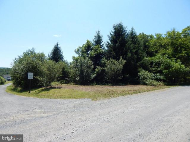 Fletcher Road, Lot 3, GORE, VA 22637 (#1002023234) :: Colgan Real Estate