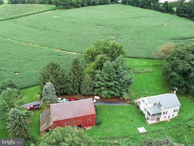 531 White Oak Road, MANHEIM, PA 17545 (#1002023718) :: The Joy Daniels Real Estate Group
