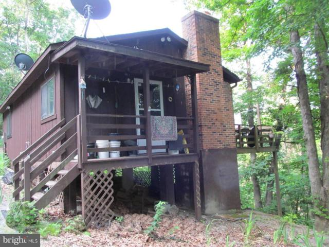 158 Cabin Lane, MOUNT JACKSON, VA 22842 (#1002030016) :: Remax Preferred | Scott Kompa Group