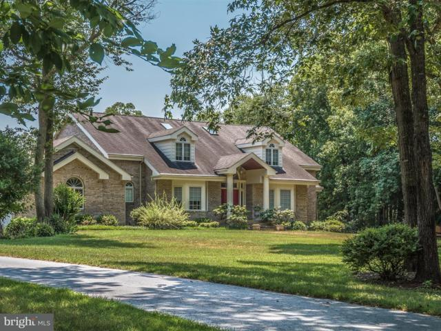 43 Rivers End Drive, SEAFORD, DE 19973 (#1002035814) :: The Windrow Group