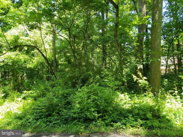 Lot 3 Woodland Drive, MCCONNELLSBURG, PA 17233 (#1002037486) :: Bruce & Tanya and Associates
