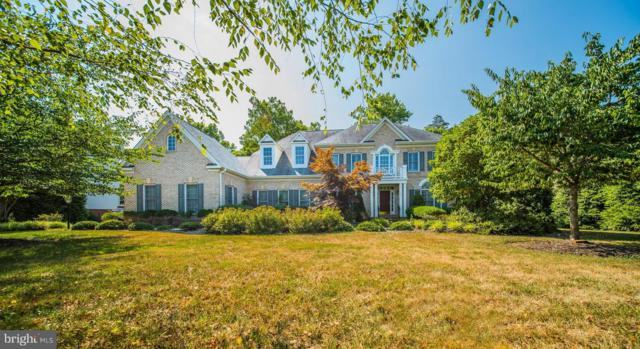 703 Childs Point Road, ANNAPOLIS, MD 21401 (#1002040374) :: Remax Preferred | Scott Kompa Group