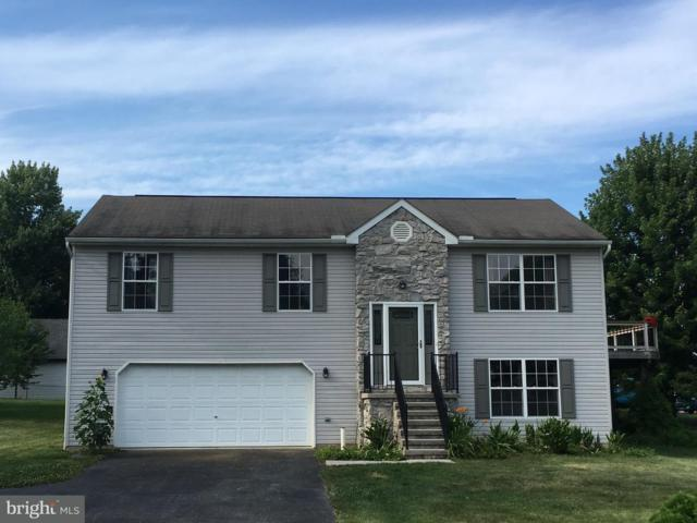 257 Lake Meade Drive, EAST BERLIN, PA 17316 (#1002040472) :: Teampete Realty Services, Inc