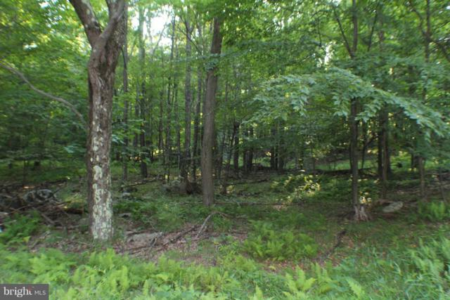 LOT 39 Dolly Sods Wilderness Retreat, MAYSVILLE, WV 26833 (#1002041576) :: Eng Garcia Grant & Co.