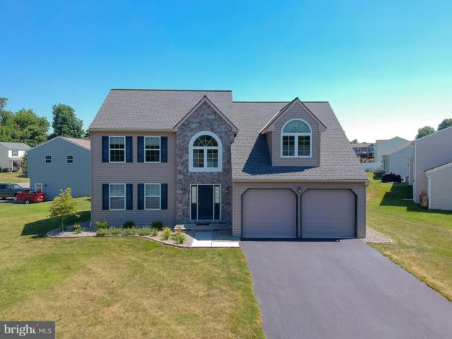 163 Overlook Drive, BAINBRIDGE, PA 17502 (#1002041618) :: The Craig Hartranft Team, Berkshire Hathaway Homesale Realty