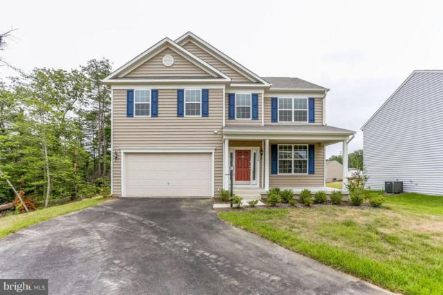 114 Cotton Blossom Court, FREDERICKSBURG, VA 22405 (#1002042272) :: Circadian Realty Group