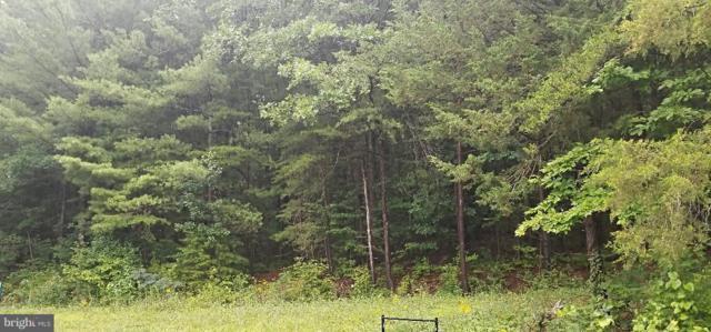 Cross Mountain Road, LURAY, VA 22835 (#1002047362) :: ExecuHome Realty