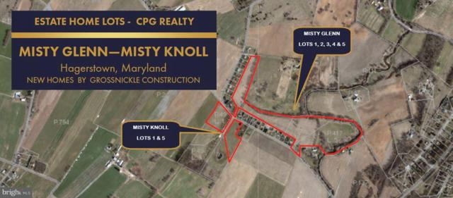 21216 Leiters Mill Road, HAGERSTOWN, MD 21742 (#1002047652) :: Great Falls Great Homes