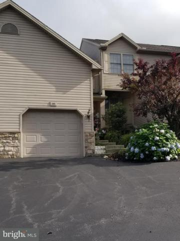 205 Whitetail Terrace, MARYSVILLE, PA 17053 (#1002049714) :: The Joy Daniels Real Estate Group