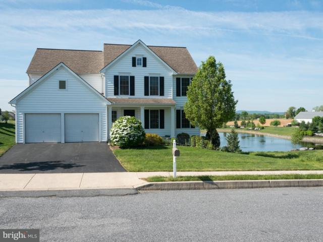 115 Lakeside Crossing, MOUNT JOY, PA 17552 (#1002054242) :: The Jim Powers Team