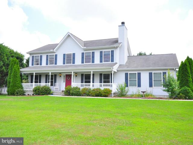 35441 Seagull Road S, SELBYVILLE, DE 19975 (#1002055300) :: The Rhonda Frick Team