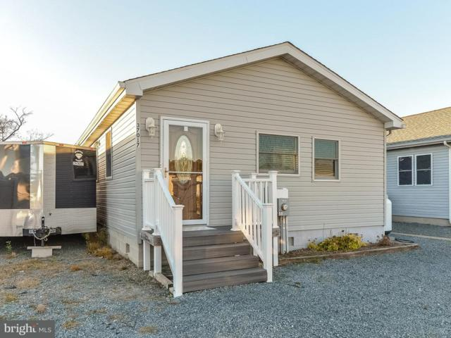 37017 Blue Teal Road, SELBYVILLE, DE 19975 (#1002056126) :: Barrows and Associates