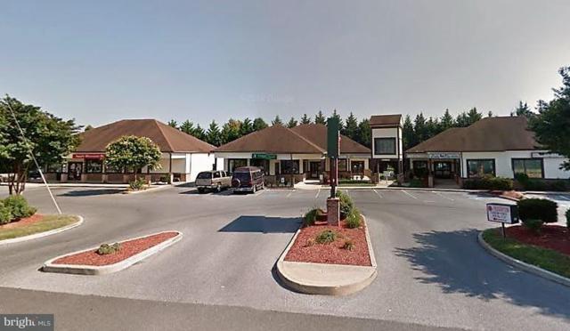 1500 Pemberton Drive, SALISBURY, MD 21801 (#1002062336) :: Condominium Realty, LTD