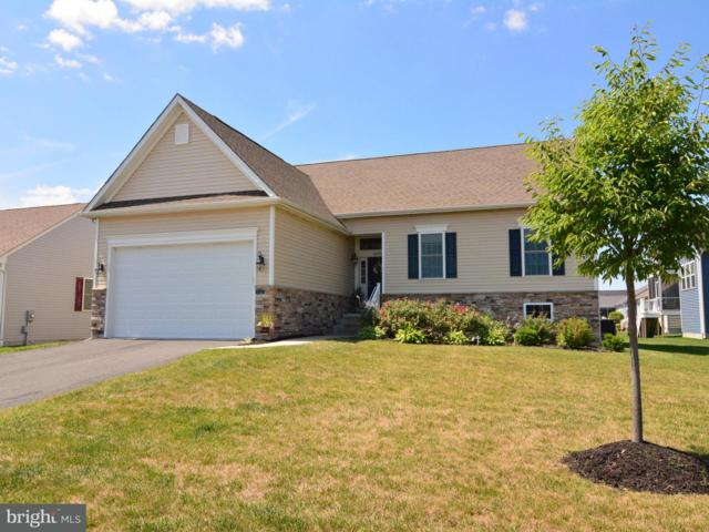 16785 Brookstone Drive, MILTON, DE 19968 (#1002063336) :: The Windrow Group