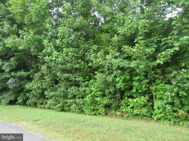 Seclusion Shores Drive, MINERAL, VA 23117 (#1002068566) :: ExecuHome Realty