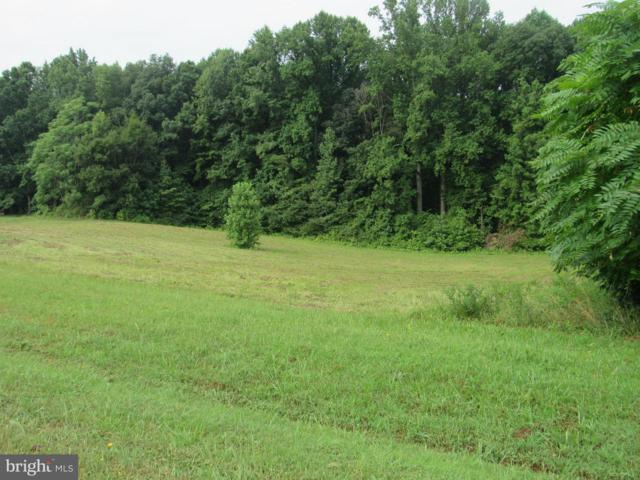 Seclusion Shores Drive, MINERAL, VA 23117 (#1002068606) :: ExecuHome Realty