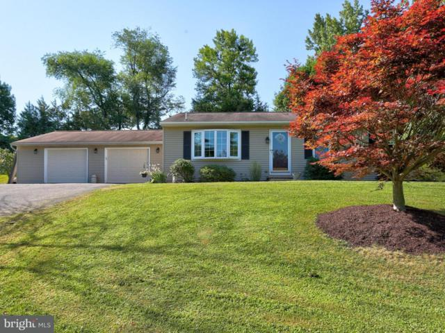 75 Angela Drive, ELIZABETHTOWN, PA 17022 (#1002068784) :: The Joy Daniels Real Estate Group