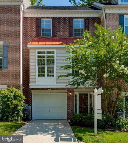613 Snow Goose Lane, ANNAPOLIS, MD 21409 (#1002069210) :: The Putnam Group