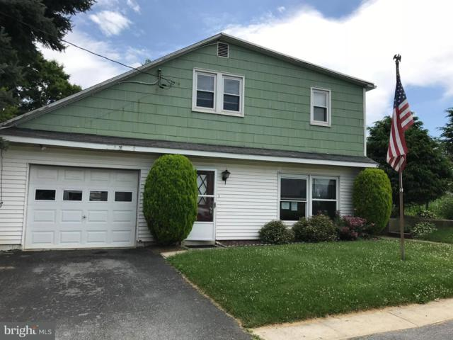 924 Donegal Springs Road, MOUNT JOY, PA 17552 (#1002069524) :: The Craig Hartranft Team, Berkshire Hathaway Homesale Realty