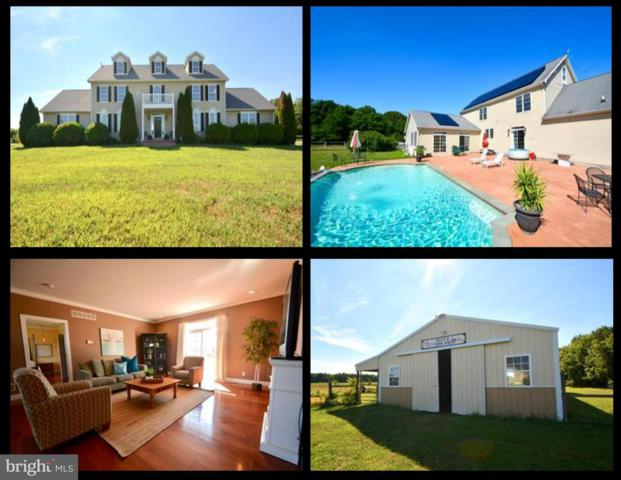 265 Pear Tree Point Road, CHESTERTOWN, MD 21620 (#1002071386) :: The Gus Anthony Team