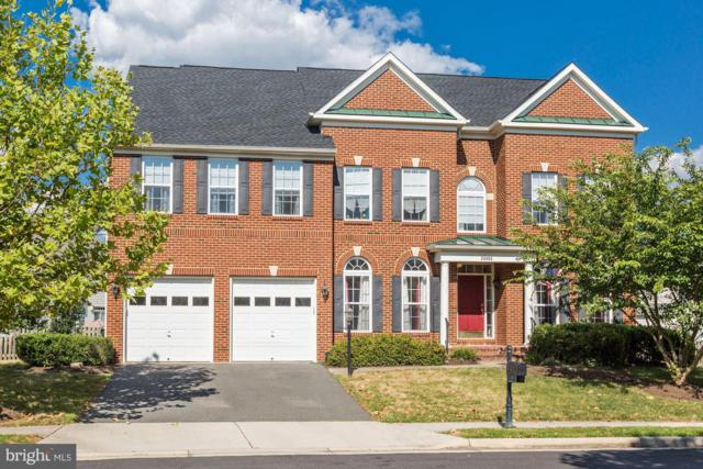 24962 Halite Drive, ALDIE, VA 20105 (#1002074254) :: Circadian Realty Group