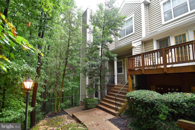 317 Overlook Drive #4, OCCOQUAN, VA 22125 (#1002077290) :: Great Falls Great Homes