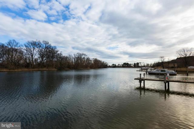209 Riverside Drive, CHESTER, MD 21619 (#1002078604) :: ExecuHome Realty