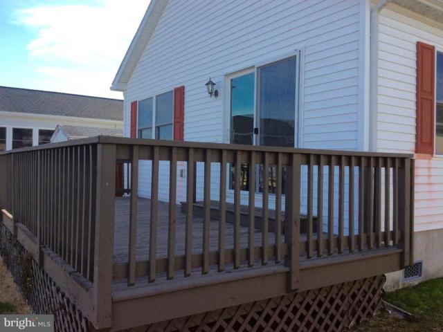 37070 Mallard Drive, SELBYVILLE, DE 19975 (#1002078864) :: Atlantic Shores Realty