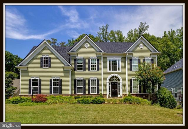 12133 Sawhill Boulevard, SPOTSYLVANIA, VA 22553 (#1002086548) :: Colgan Real Estate