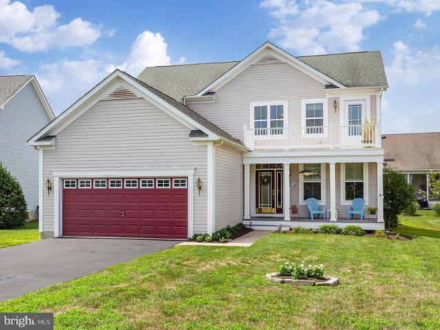 36959 Trout Terrace N, SELBYVILLE, DE 19975 (#1002088388) :: The Windrow Group
