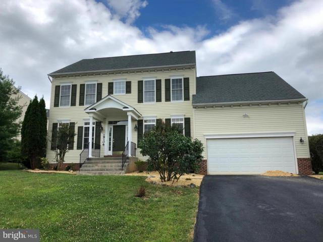 19106 Silver Maple Court, HAGERSTOWN, MD 21742 (#1002088932) :: Colgan Real Estate