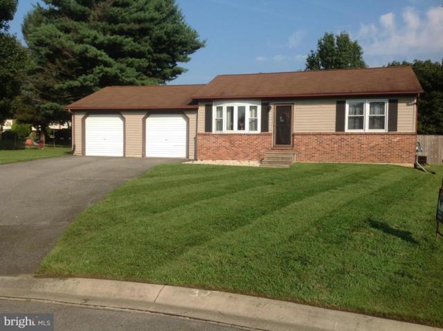 125 Castlestone Drive, ELKTON, MD 21921 (#1002090384) :: Remax Preferred | Scott Kompa Group