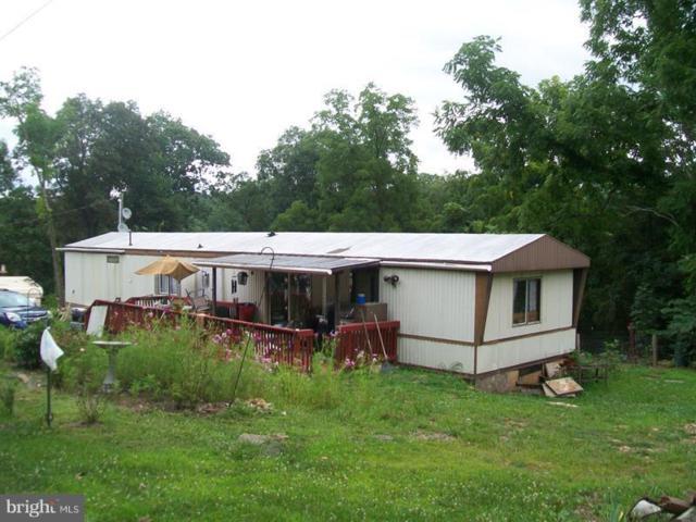 1442 Feller Drive, LEVELS, WV 25431 (#1002091564) :: Remax Preferred | Scott Kompa Group