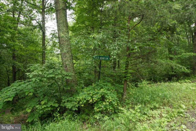 Black Bear Lane, AUGUSTA, WV 26704 (#1002095306) :: Colgan Real Estate