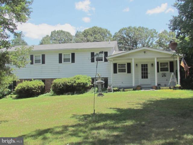 5523 Waterford Rd, RIXEYVILLE, VA 22737 (#1002098876) :: Colgan Real Estate