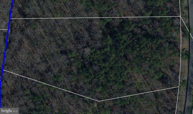 Alphin Lane, CULPEPER, VA 22701 (#1002101168) :: Remax Preferred | Scott Kompa Group