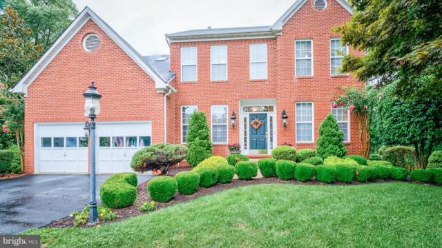 21257 Bullrush Place, STERLING, VA 20164 (#1002101314) :: Colgan Real Estate