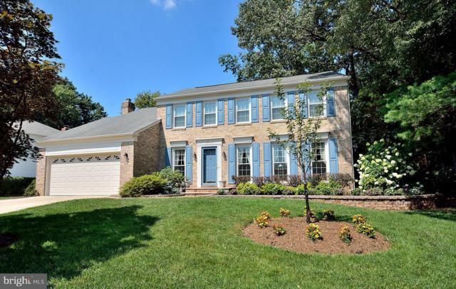 13412 Point Pleasant Drive, CHANTILLY, VA 20151 (#1002114092) :: Circadian Realty Group